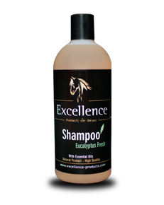 Shampoing Eucalyptus Fresh - 99% Naturel